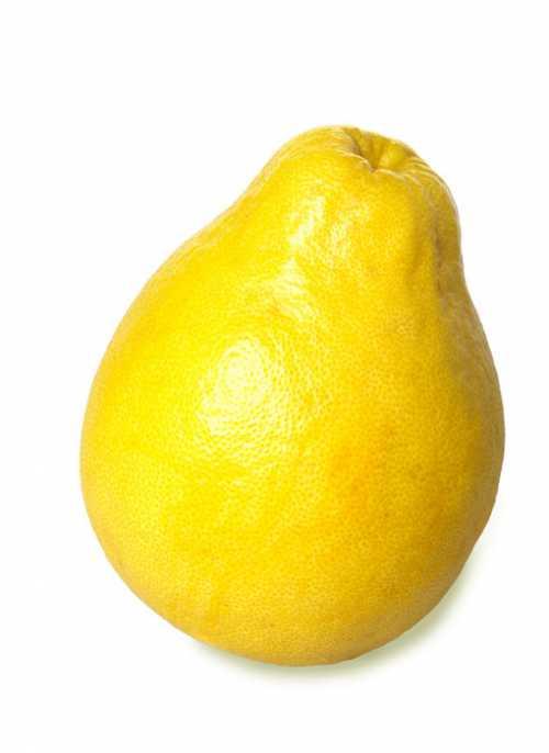 гранат: что это за фрукт